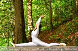 Veliki joga kamp – Amrita, Kopaonik